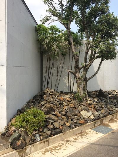 江南市にある設計事務所の角庭2