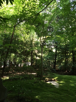 嵐山の竹林の小径4
