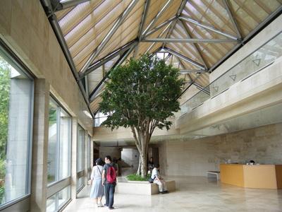 滋賀県にある MIHO MUSEUM8