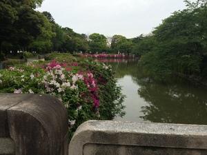トナリノ 名城公園4