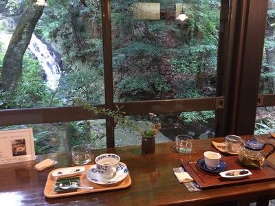 瀬戸散策、薬膳茶ソイビーンフラワー