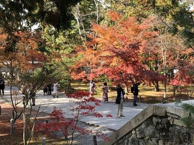 南禅寺 紅葉 京都