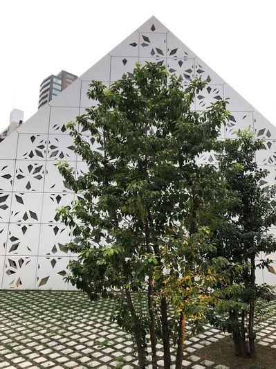 メルセデスミー東京 建築 散策 未来の家 電気自動車